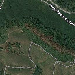7+/- Acres Timberland in Saline County Arkansas